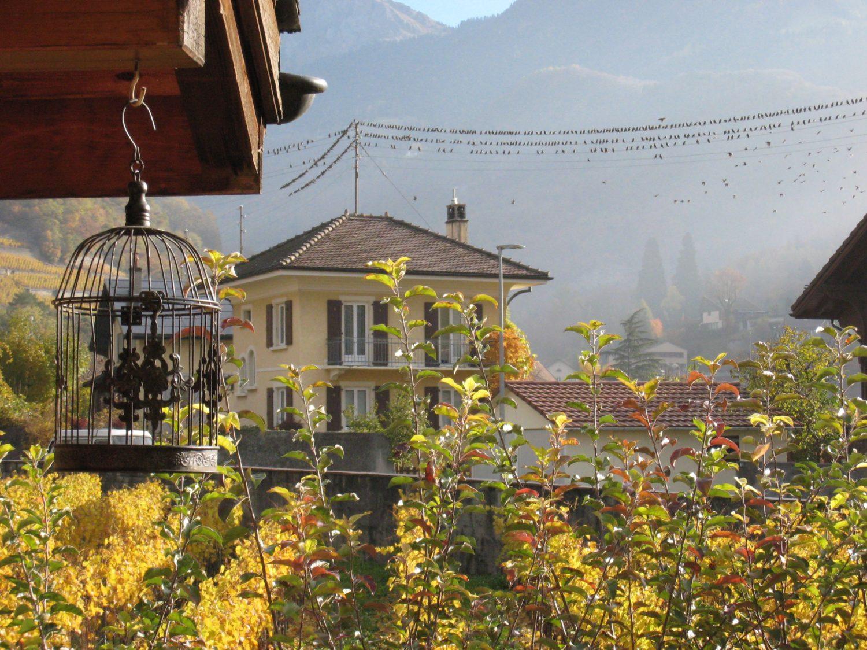 Zendo Les Hirondelles, Aigle (VD) Suisse